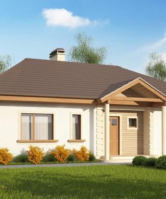 Проект одноэтажного частного дома Минск