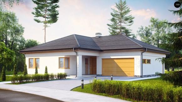 Проект одноэтажного дома с окнами в пол Z204