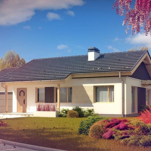 Проект небольшого одноэтажного дома с гаражом Беларусь