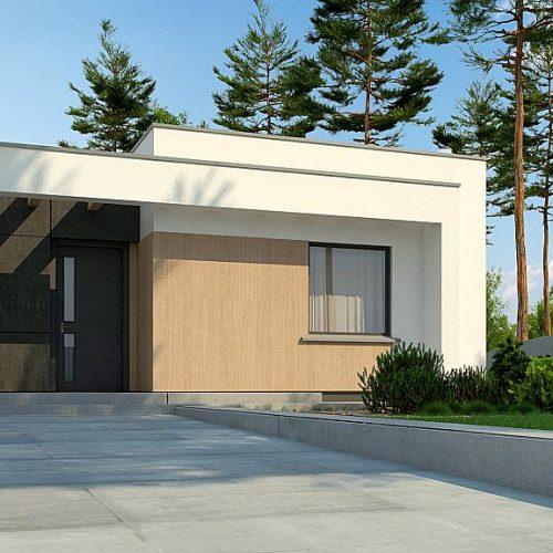 Фото проекта дома Zx77 D вид 2